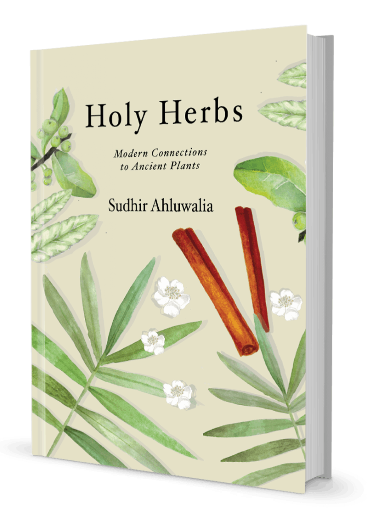 Holy Herbs Book Cover