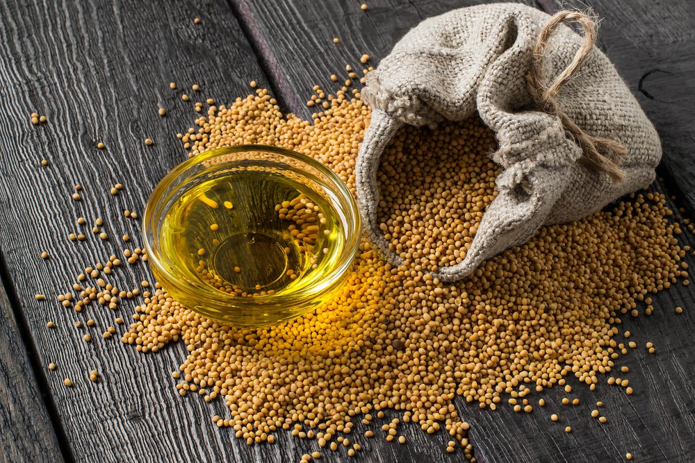 Mustard- In Ancient And Modern Medicine |