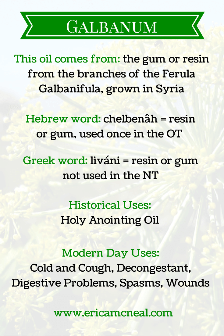 Galbanum – trade and production