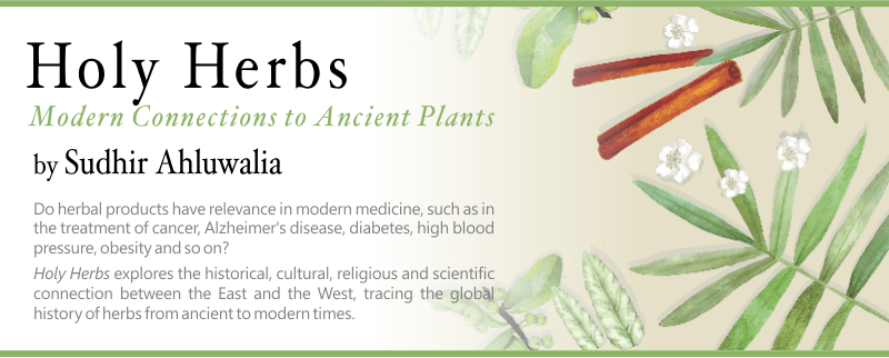 Holy Herbs – History of herbs
